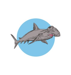 Hammerhead Shark Swimming vector
