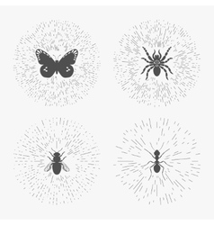 Hipster logo templates with insects vector