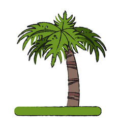 Palm vector