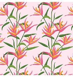 Pink bird of paradise flowers pattern vector