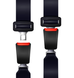 realistic seat belts set vector image