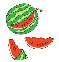 ripe cut watermelon vector image