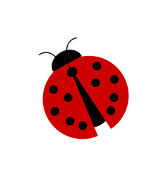simple red ladybug vector image