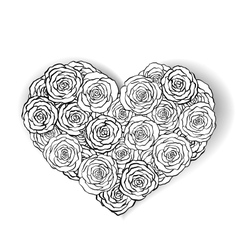 Black and white roses bouquetmonochrome heart vector image