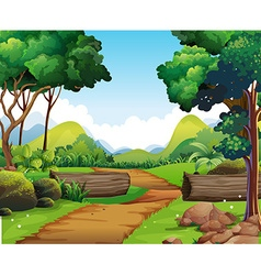 Scene with hiking track and trees vector image vector image