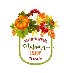 Autumn season maple leaf or pumpkin poster vector