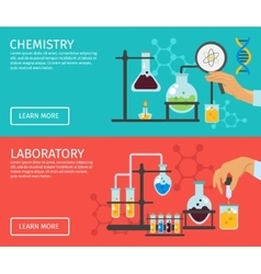 Professor Of Chemistry Flat Banner Set vector image