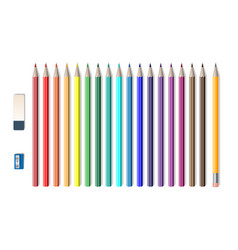 set of colored realistic pencils with sharpener vector image