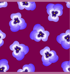 violet viola garden pansy flower on purple red vector image