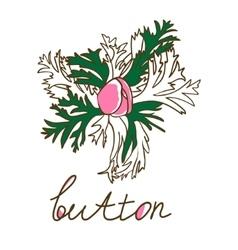 Hand drawn bud anemone Vintage vector image