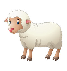 cartoon of cute sheep animals and interesting vector image