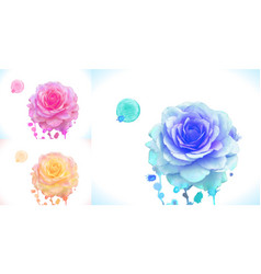 pink orange and blue rose ar vector image