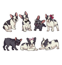 Set of cute little french bulldog vector