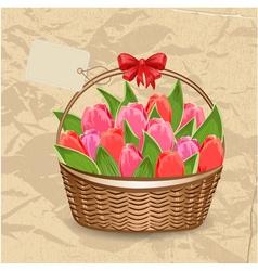 tulip5 vector image