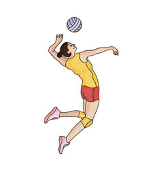 high athlete plays volleyballthe player throws vector image vector image