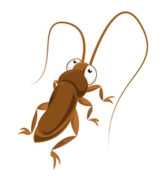 Big eyed cockroach vector image