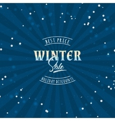 Big Sale winter insignia and labels for any use vector