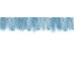 blue pine branch fir tree branch vector image