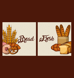 bread fresh cards bakery food products vector image