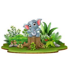 Cartoon happy baby elephant sitting on tree stump vector