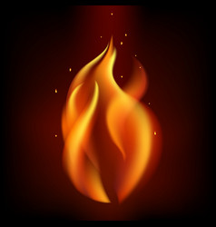 red burning fire flame isolated on black vector image