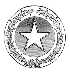 The official seal of the us state of texas in vector