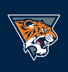 Tiger head sport mascot vector