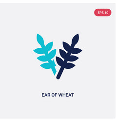 two color ear wheat icon from food concept vector image