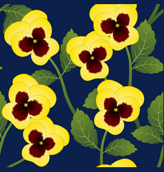 yellow pansy flower on navy blue background vector image