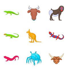 australian animal icons set cartoon style vector image