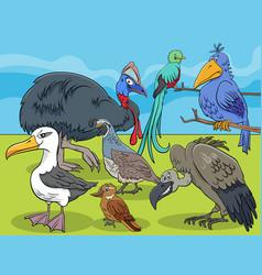 Birds animal characters group cartoon vector