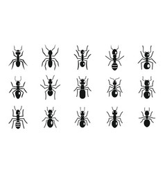 Cute ant icons set simple style vector