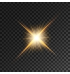 Gold bright star light flash vector