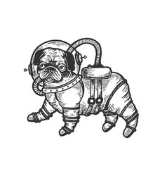 pug puppy in armour space suit engraving vector image