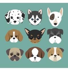 Purebred dogs design vector
