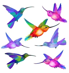 Set isolated humming birds vector
