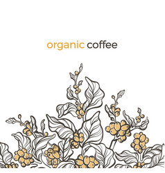 Template coffee branch 7 vector