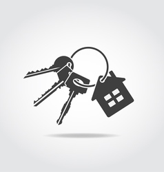 Keys trinket black icon vector