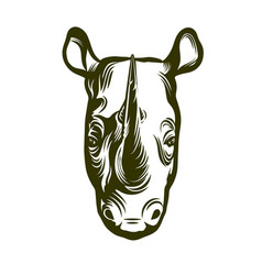head of african rhino vector image