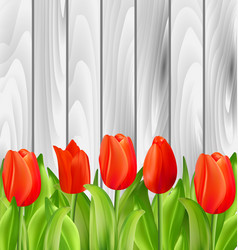 beautiful tulips flowers on wooden background vector image