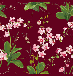 orchid tropical leaves and flowers background vector image vector image