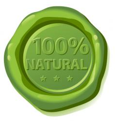 seal natural vector image vector image
