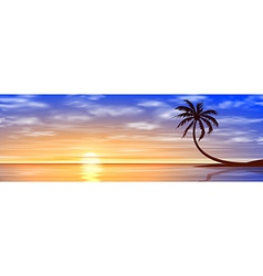 Sunset Sunrise with Palm Tree vector image vector image