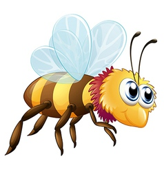A colorful bee vector image