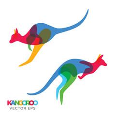 creative kangaroo animal design vector image