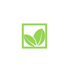 green leaf logo shape plant in square frame vector image