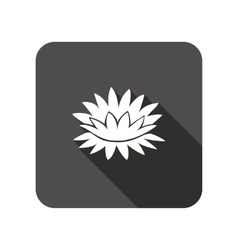Lily flower icons Water-lilies floral symbol vector