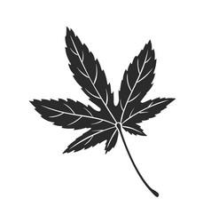 maple leaf autumn symbol vector image