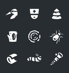 set woodpecker icons vector image