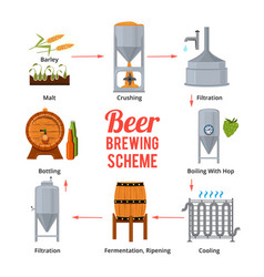 stages of beer production symbols of vector image